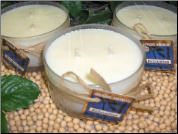2-Wick Frosted Jar Dye Free Soy Candles
